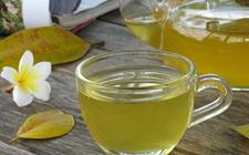 <b>喝白沙绿茶的功效有哪些?白沙绿茶功效介绍</b>