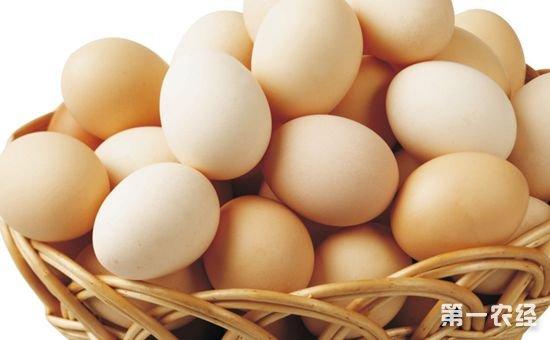 鸡蛋检测追溯一体化系统在北京正式发布