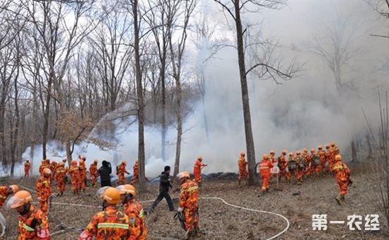 国家林业局多举措并举 深入推进元旦期间森林防火工作