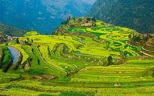 农村新产业新业态用地将获政策支持 保障农村产业融合发展