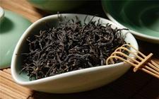 小种、滇红、祁红三大红茶的区别在哪里?