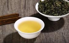 怎样品尝铁观音茶?品尝铁观音茶有什么讲究?