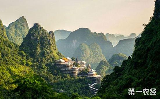 """广西森林覆盖率已达62.28% """"绿水青山""""正日益成为""""金山银山"""""""