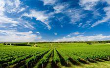 <b>农业部在京举办新版门户网站上线开通活动</b>