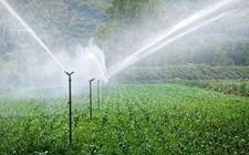 <b>我国不断完善农田水利设施 新增高效节水灌溉面积2165万亩</b>