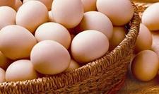 元旦效应结束 鸡蛋价格或将震荡走低