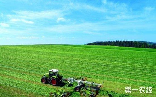 吉林梨树:十条探索途径加快现代农业发展步伐