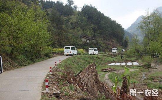 """河南:围绕""""四好""""标准打造农村公路  农民出行条件得到改善"""