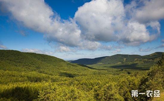 盘点2017年十大新闻之自然生态保护