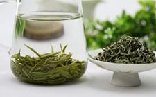 喝什么茶清肠排油效果更好?清肠排油茶有哪些?