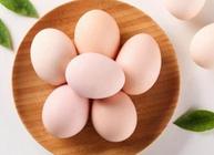蛋鸡存栏量持续上升 蛋价又要狂跌不止了吗?呈现抬升,蛋价又要狂跌?