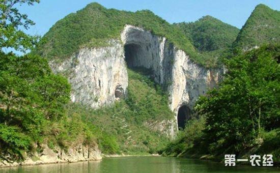 陕西:深入推进生态建设 大力发展林下经济和生态旅游