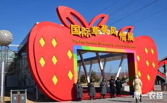 首届国际草莓品牌大会将于3月24日-25日在江苏省南京市溧水区举行