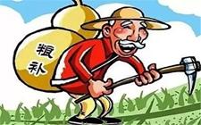 <b>不用再怕赔钱啦!今年种小麦、玉米、稻谷会这样补贴!</b>