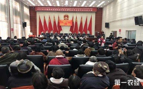 青海甘德县:岗龙生态畜牧业召开分红大会