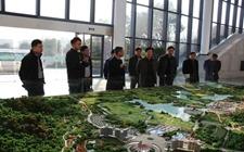 国家林业局:我国启动大规模国土绿化行动