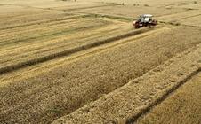 全国耕地质量状况总体稳定 优等地主要分布在三个省