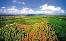 <b>深入推进新时代农垦改革 开创新时代农垦改革发展新局面</b>