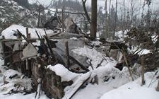 重庆部分区县发生雪灾损失严重 已下拨冬春救助资金救灾抗灾