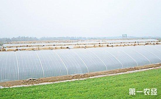 """海盐:以""""农民素质提升工程""""为抓手  超额完成农民培训任务"""