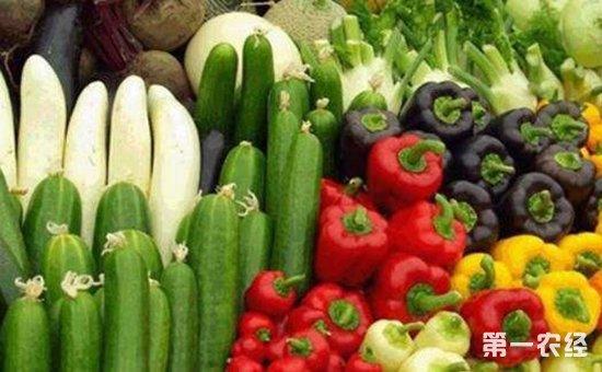 提高农业发展质量当务之急  质量兴农必须坚持质量第一