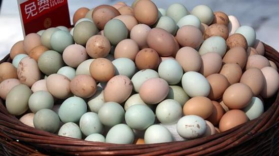 因雨雪而上涨蛋价 在雨雪天气之后将如何?