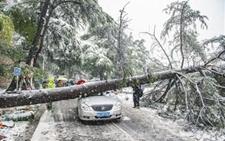 受两轮强度较大雨雪天气影响 我国中东部地区受灾严重损失大