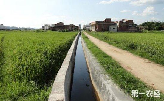 德州陵城:发展节水农业力抓农田水利建设工程