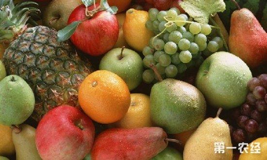 山西太原元旦后一周水果价格行情