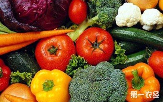 苏州南环桥市场这两日农产品价格忽上忽下