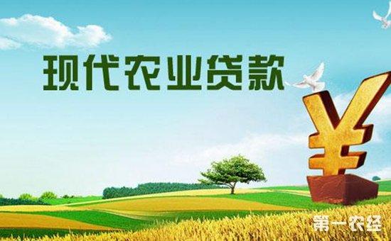 """山东破解融资""""三难题""""成立农业信贷担保机构"""