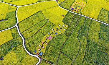 紧跟大数据时代步伐 推动我国从农业大国走向农业强国