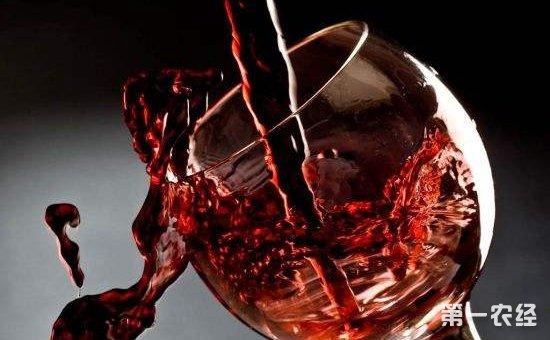 葡萄酒市场规模将持续扩容  高端化品质化消费追求凸显