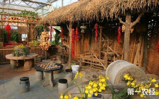 灵川:合作社鼓励村民入股发展休闲农业获肯定