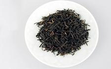 白琳工夫是什么茶?如何区分品质好坏