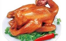 河北石家庄著名特色美食:金凤扒鸡