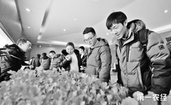 """第三届北京""""强农百企汇""""主题活动在北京首农香山会议中心举行"""