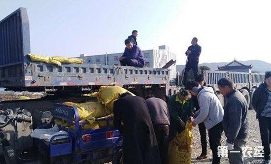 黑龙江创业农场备足农资助力春耕生产