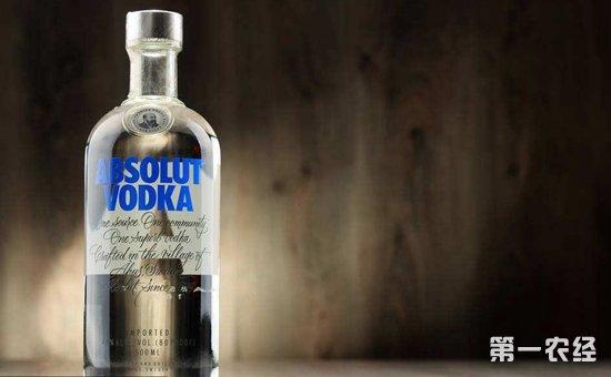 伏特加是什么酒?伏特加怎么喝?