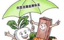 """淄博:肉菜流通追溯系统确保市民""""""""舌尖上的安全""""获认可"""