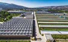 青海海东市谋求科技突破 推进现代农业发展