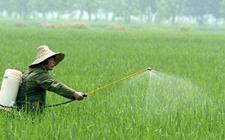 美国、乌干达等17个国家联合签署农药使用声明