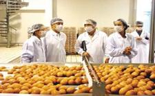河南制定针对出口农产品质量安全检验检疫具体优惠政策