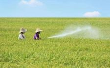 """抓好农药管理的""""三严格""""和""""三加快"""" 坚持绿色农业发展道路"""