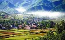 <b>福建:农业供给侧改革显成效 拟壮大新型职业农民</b>