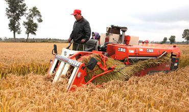 河南郑州今年主要农作物耕种收综合机械化水平在82%以上