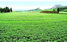 <b>注意!2018农业领域将迎来6个重大改革</b>