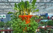 农业部与北京市签署合作协议 打造农产品绿色优质安全标杆样板