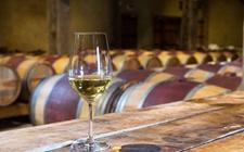 白葡萄酒怎么自酿?家庭白葡萄酒的制作方法
