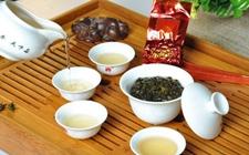 <b>我国各地茶风茶俗之——闽南的饮茶习俗</b>